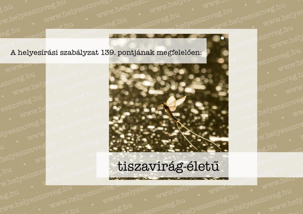 Helyes-szöveg-korrektúra-Nyelvlecke-2021-07-05-tiszavirág-02
